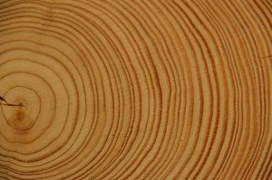 wood-178223_1280